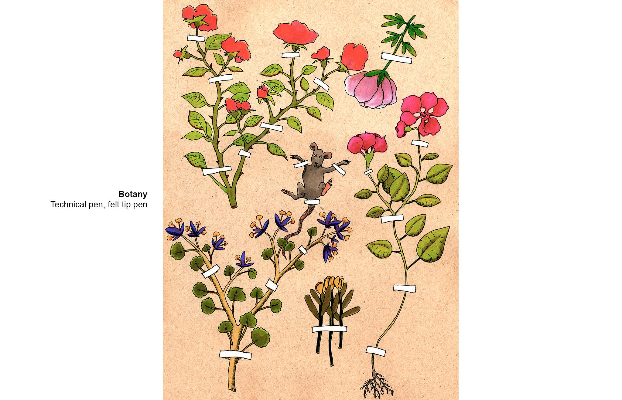 04-Botany